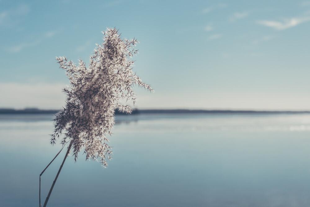 Am See - fotokunst von Björn Witt
