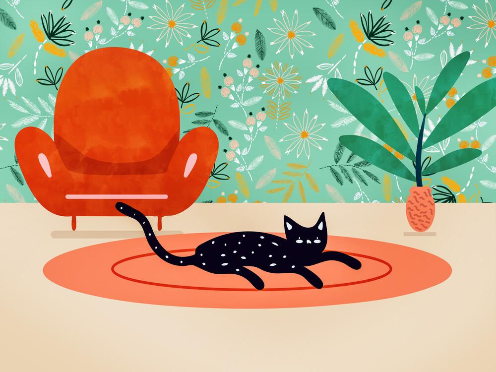 Boho Cat - fotokunst von Uma Gokhale