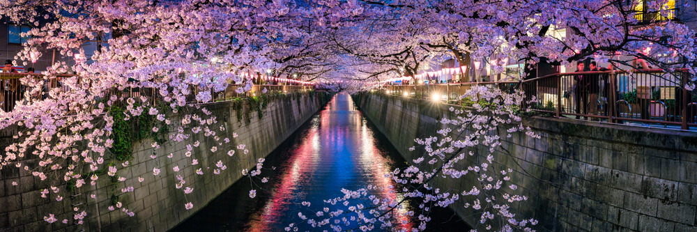 Nakameguro Kirschblütenfest in Tokyo - fotokunst von Jan Becke