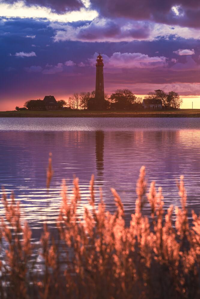 Flügge bei Sonnenuntergang - fotokunst von Jean Claude Castor