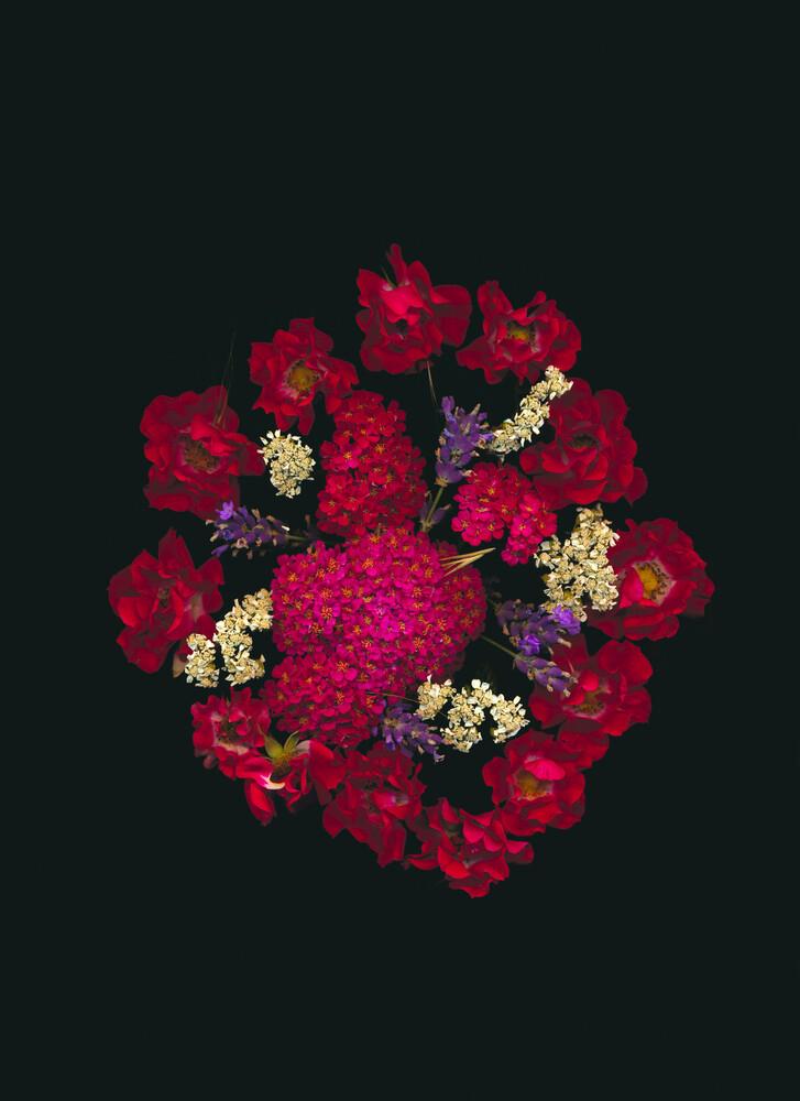 Tallulah - fotokunst von Ramona Reimann