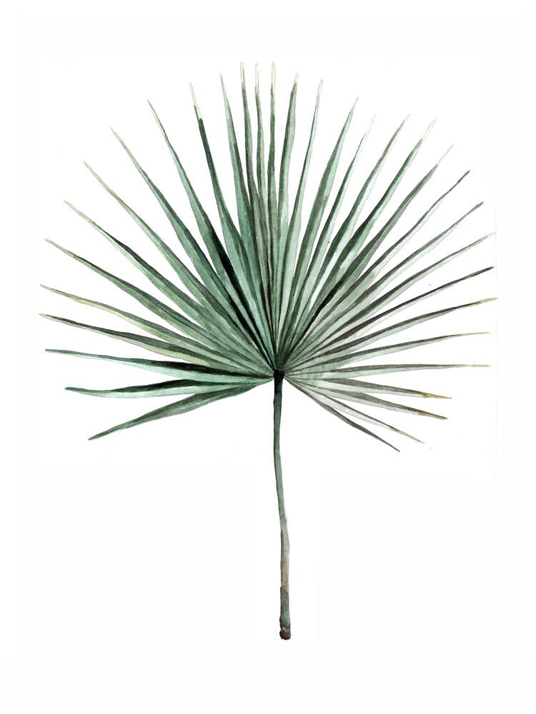 Mantika Botanical Palmwedel - fotokunst von Christina Wolff