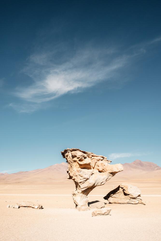 The Stone Tree - fotokunst von Felix Dorn