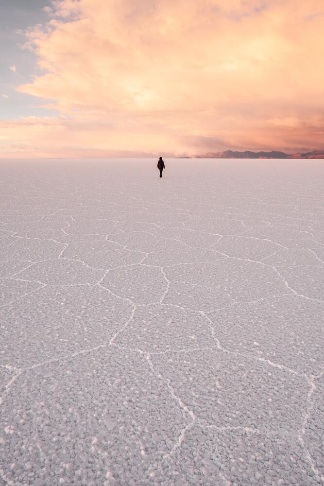 Salt Dream - fotokunst von Felix Dorn