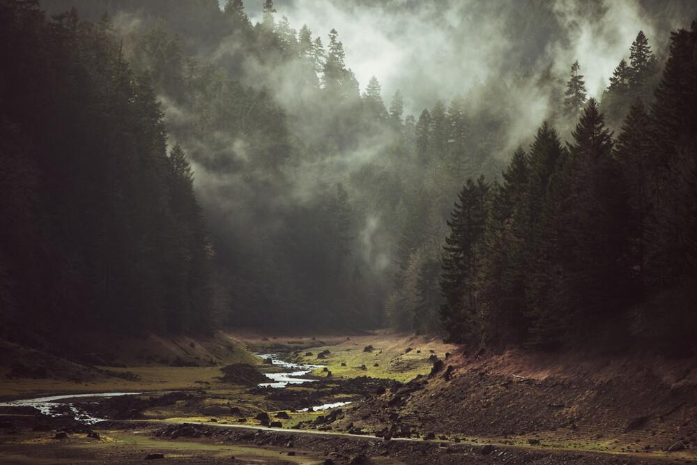 Foggy Forest Creek - fotokunst von Kevin Russ