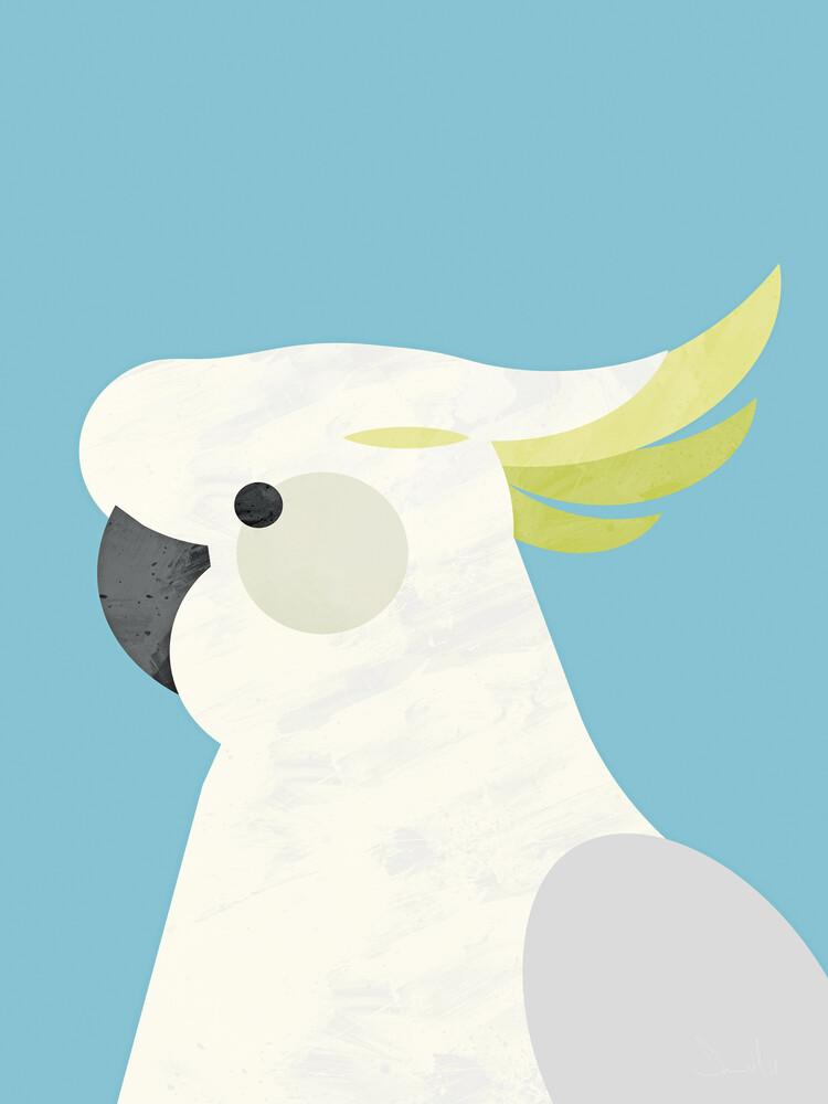 Parrot - fotokunst von Dan Hobday