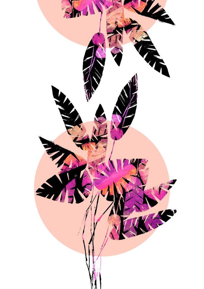 Schwarz-pinke Blätter - fotokunst von Pia Kolle