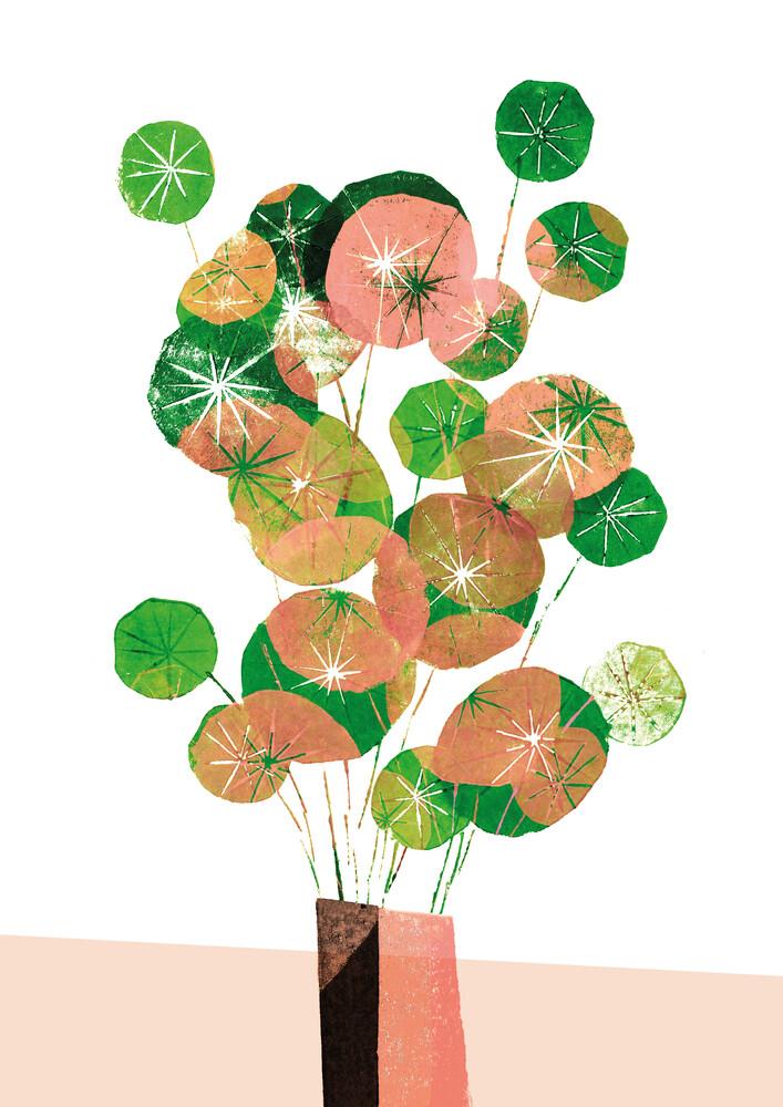 Pilea in der Vase - fotokunst von Pia Kolle