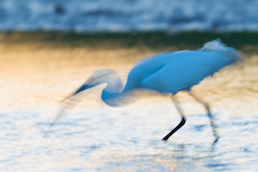 Bewegung in Blau - fotokunst von Frederic Bauer