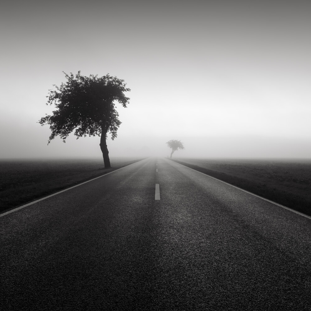 Road to nowhere 1 - Fineart photography by Thomas Wegner