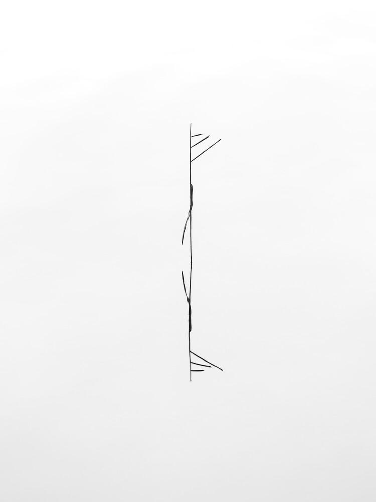 minimalist beauty - fotokunst von Holger Nimtz