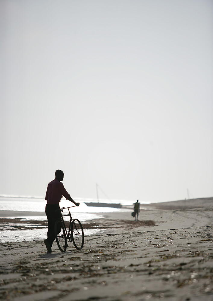 Bike Boy - Fineart photography by Shot by Clint