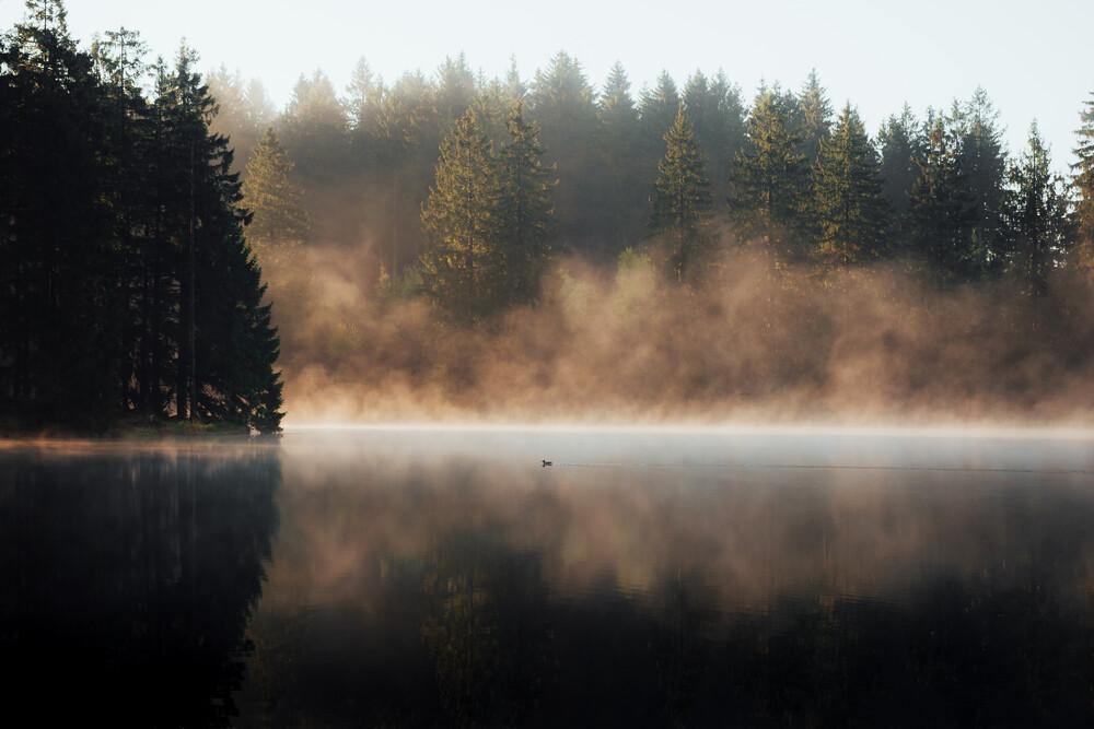 Spring Fire - fotokunst von Maximilian Fischer