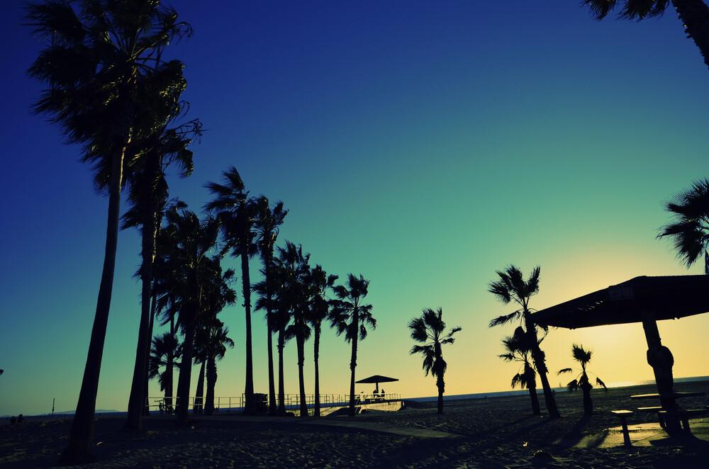 Palmenstrand - fotokunst von Michael Brandone