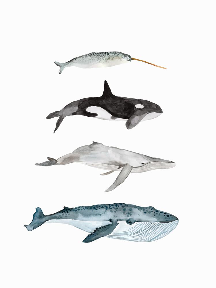 Sea Life - Whales - fotokunst von Christina Wolff