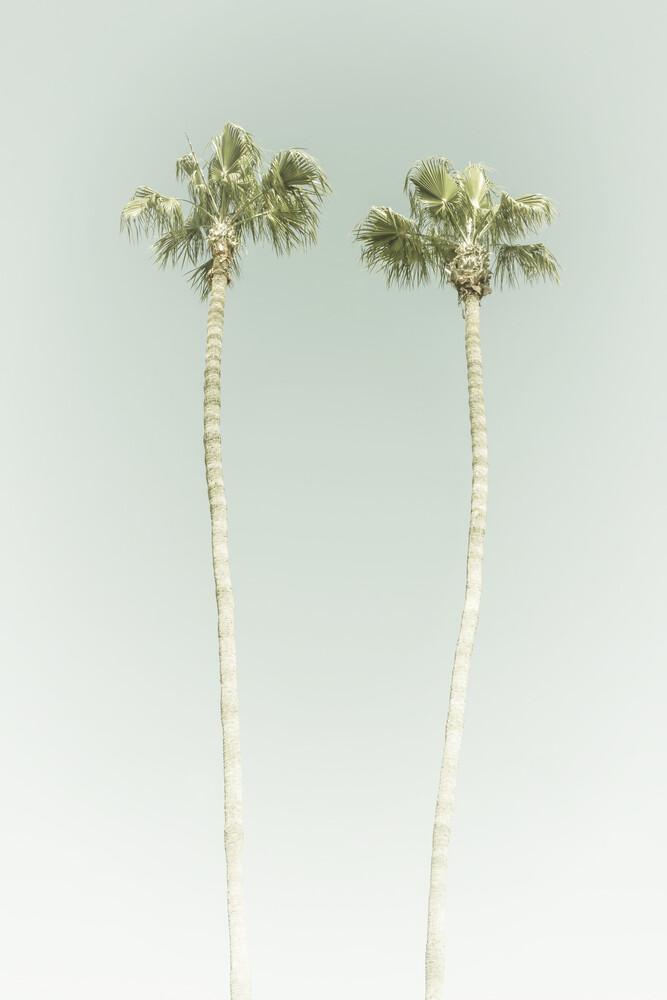 Vintage Palmenidylle - fotokunst von Melanie Viola