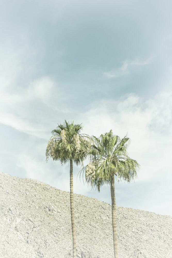Palmen in der Wüste - fotokunst von Melanie Viola