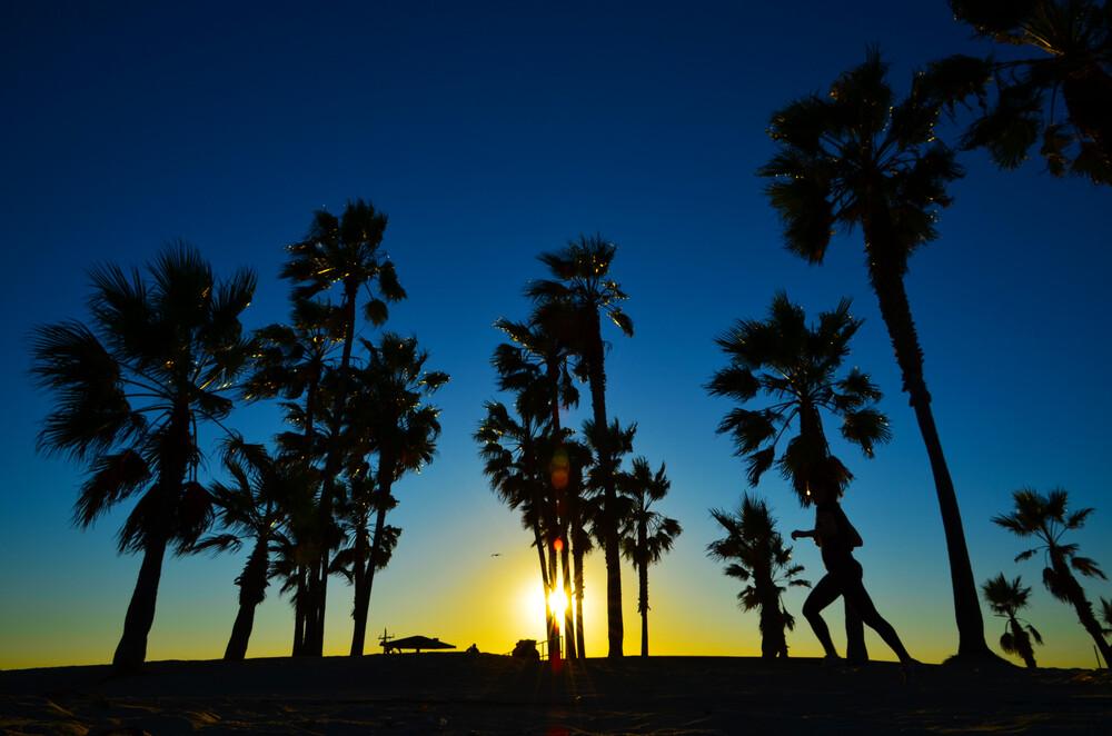 Sonnenuntergang in Palmenschatten - fotokunst von Michael Brandone