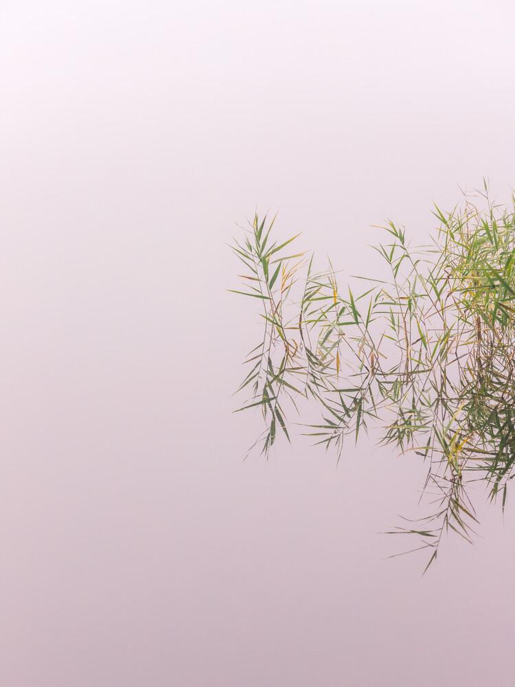 lakeside - fotokunst von Holger Nimtz