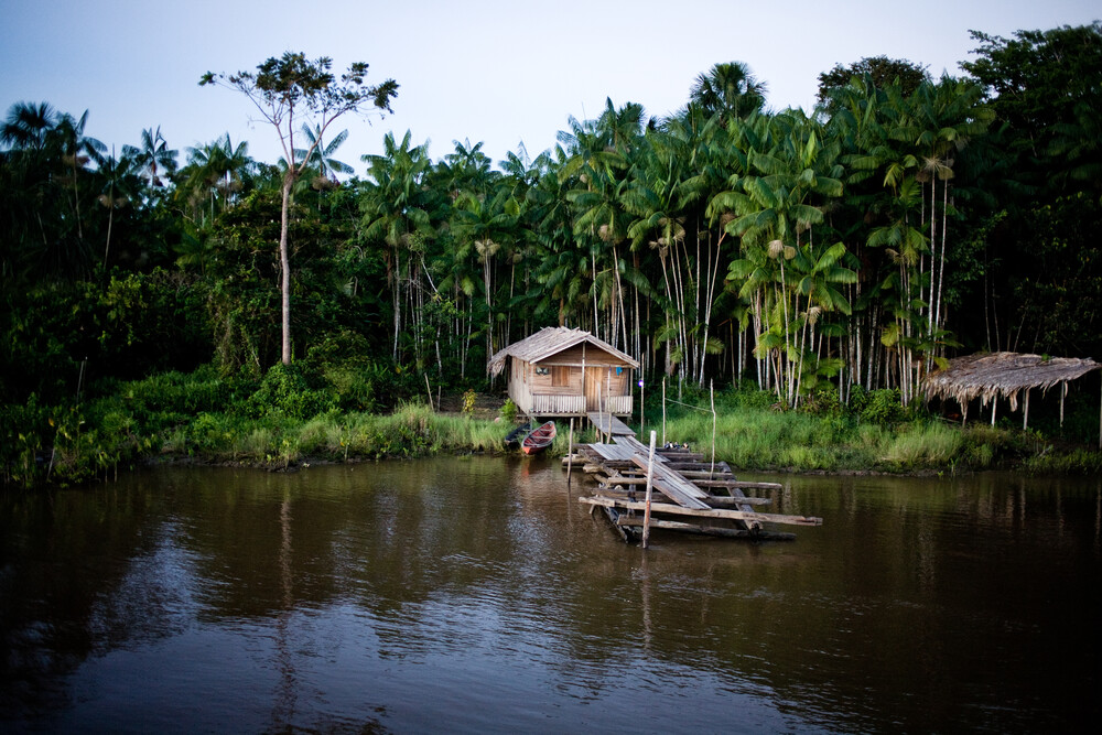 House in Amazon Forest - Fineart photography by Davi Boarato