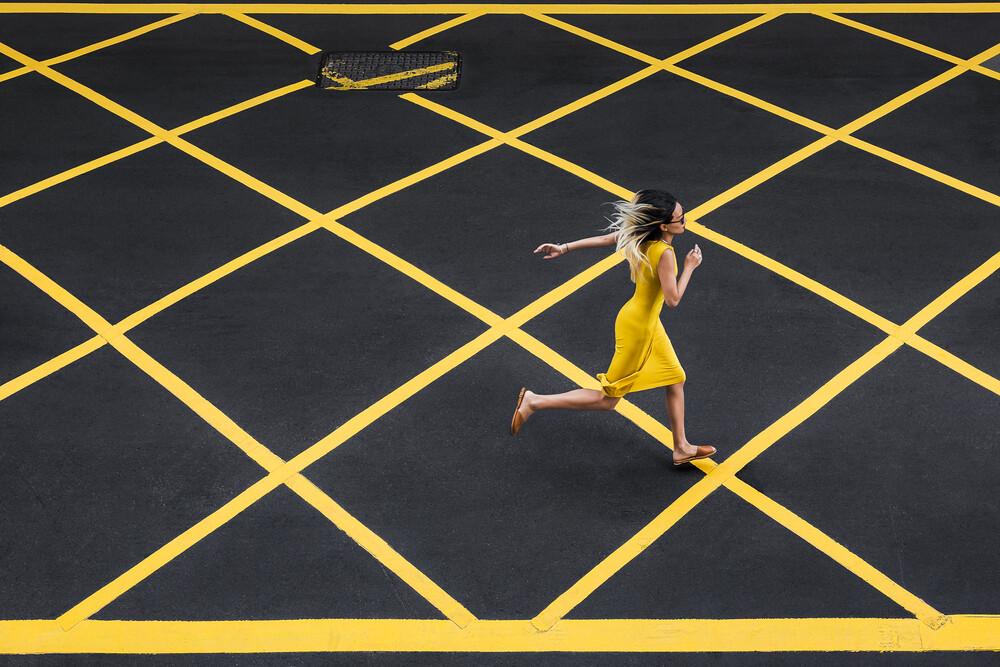 Road Crossing - Fineart photography by AJ Schokora