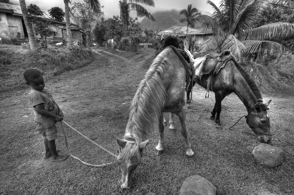 Abaca - fotokunst von Björn Groß
