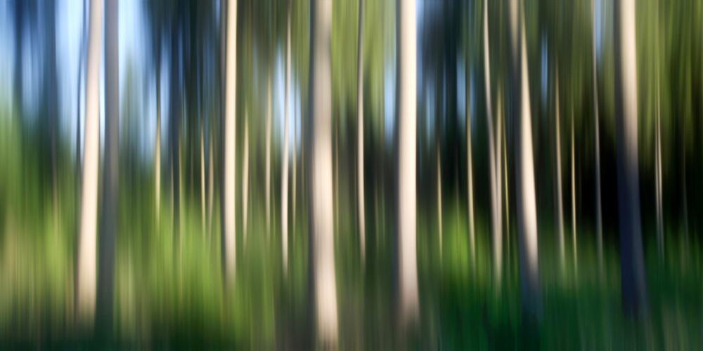 Träumen - fotokunst von Thomas Bölke