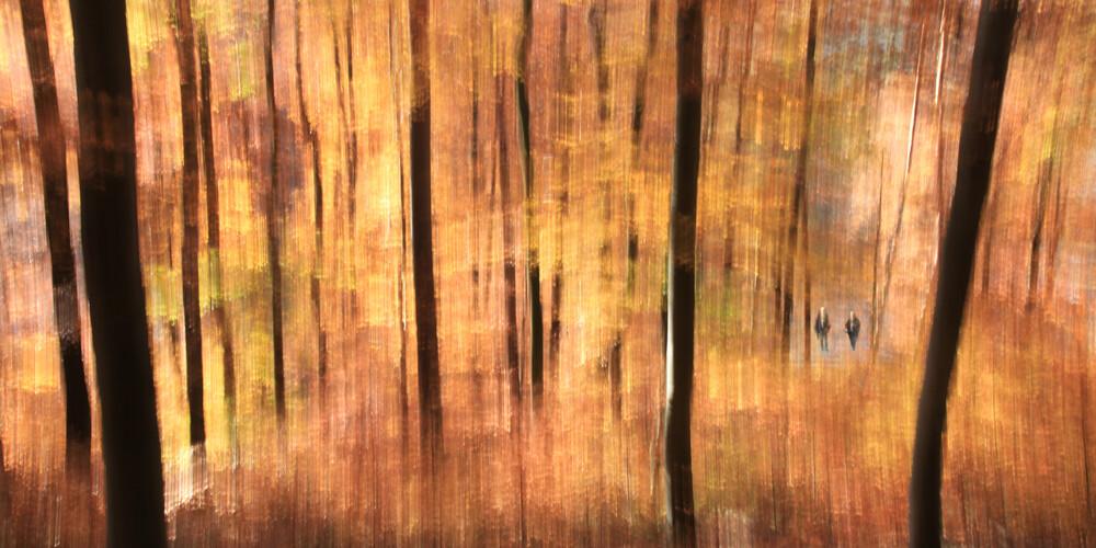 Herbstwanderung - fotokunst von Thomas Bölke