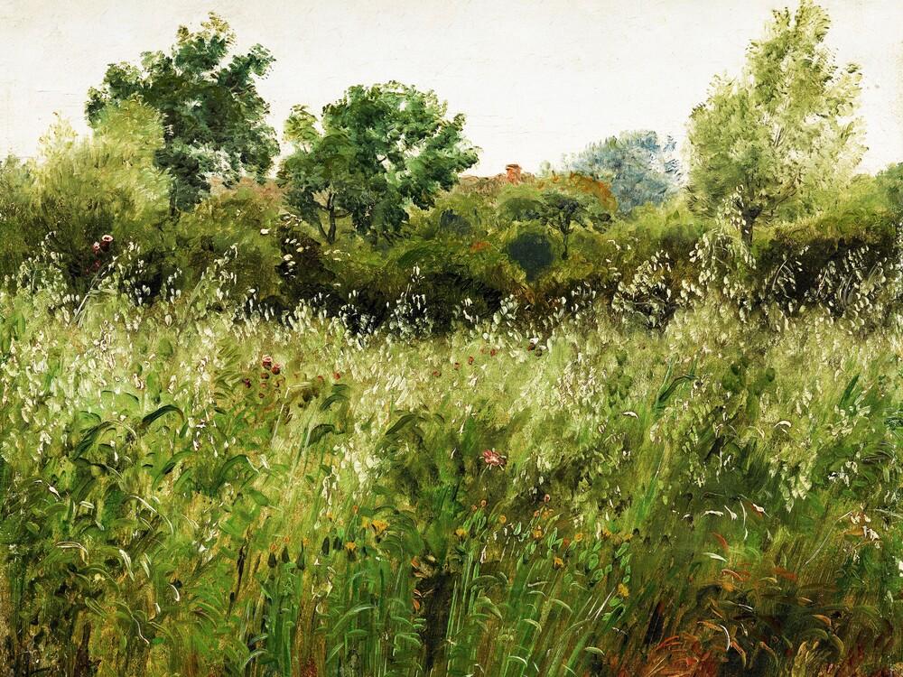 Skovgaard: Field of Oats - Fineart photography by Art Classics