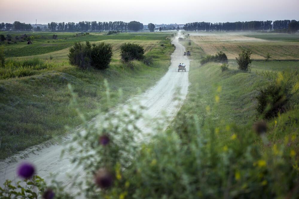 Working field - fotokunst von George Popescu