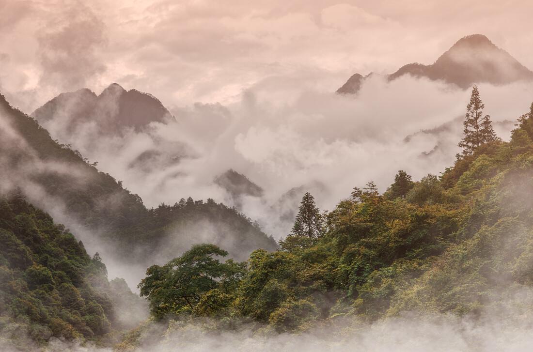 Last Light Misty Mountain - fotokunst von AJ Schokora