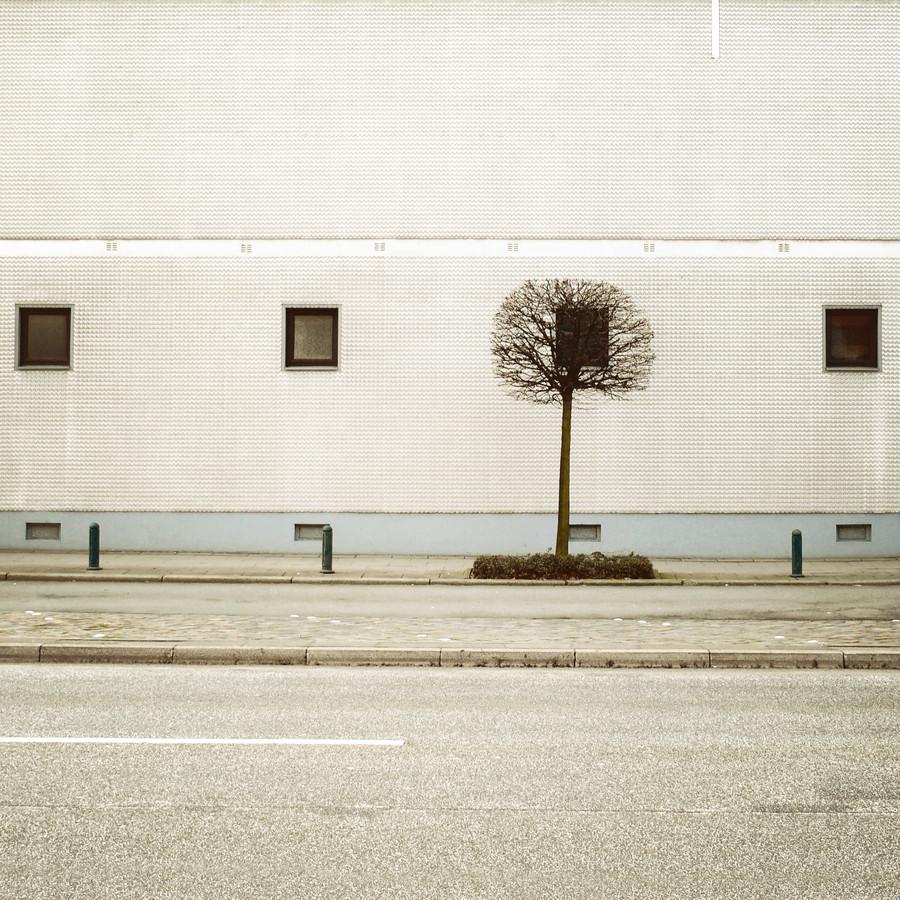 Urban Landscaping - fotokunst von David Foster Nass