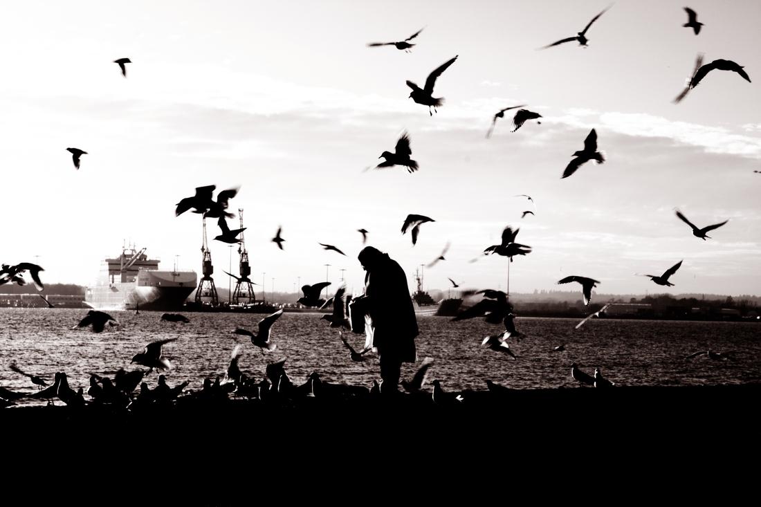 Alleine unter Freunden am Hafen - Fineart photography by Daniele Cascato