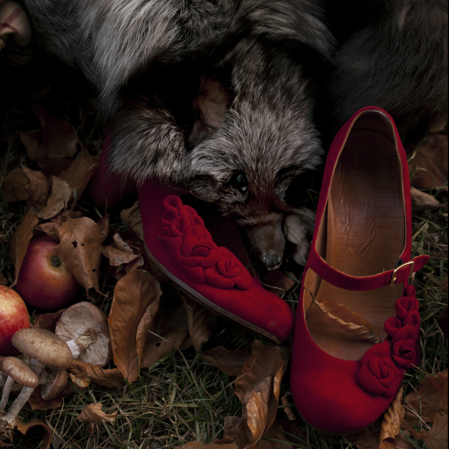 Hello Red Riding Hood - (6/6) - Fineart photography by Madelaine Grambow