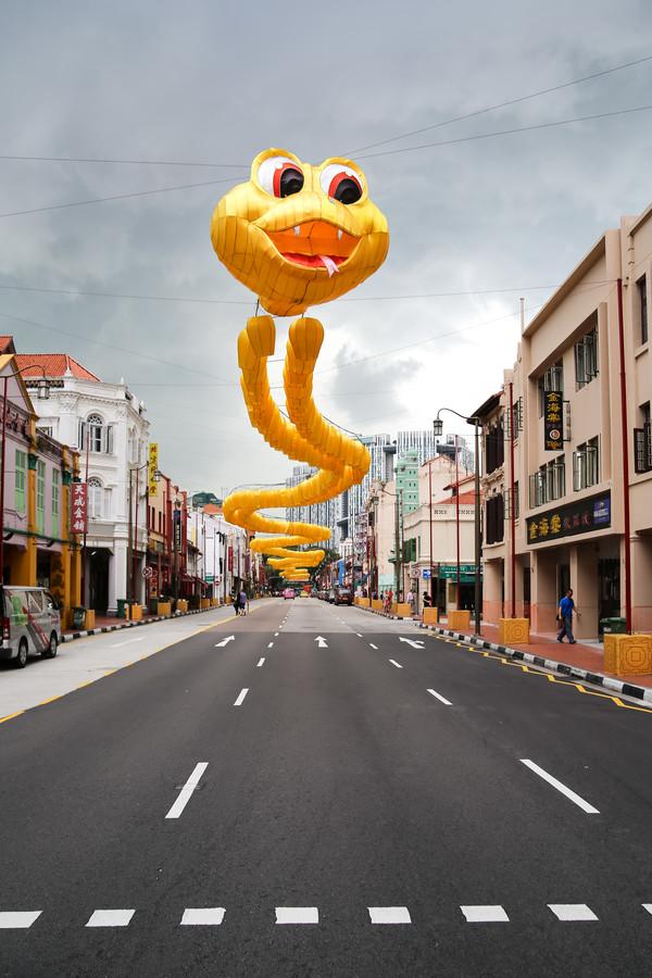 Singapore Dragon - fotokunst von Arno Simons