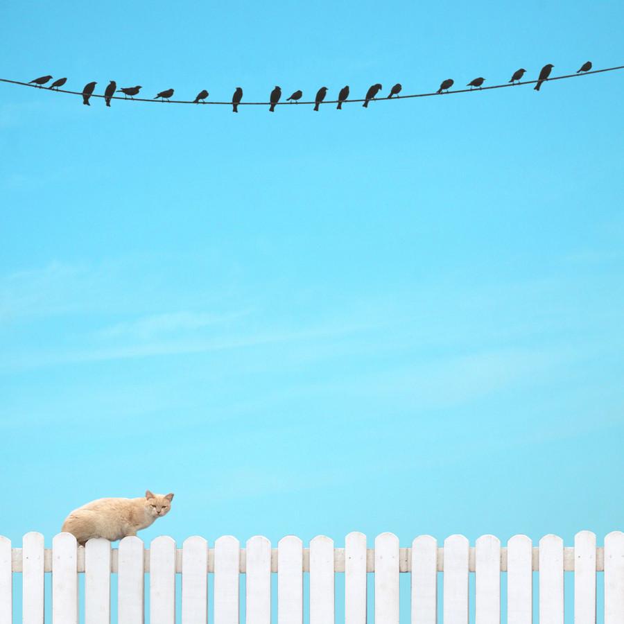 Patience - fotokunst von Pascal Krumm