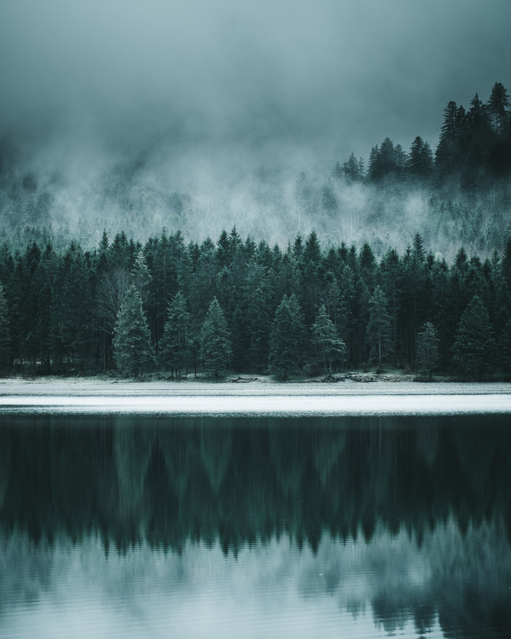 Forest Reflection - Fineart photography by Luca Jaenichen
