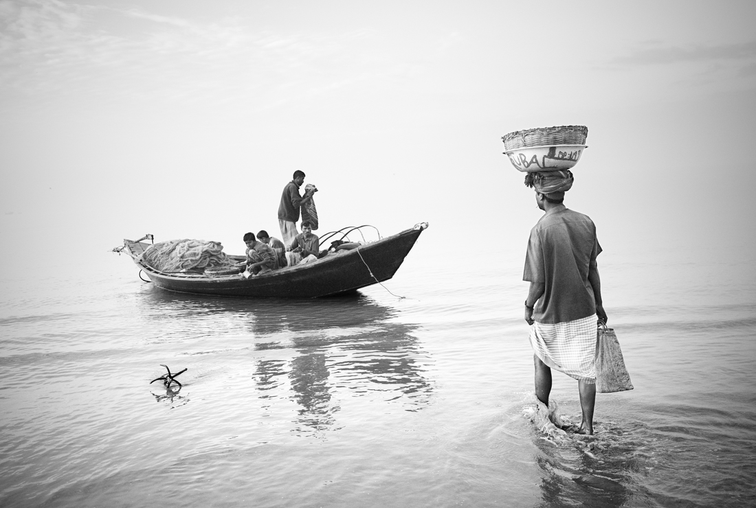 Merchant buying fresh fish, Kuakata, Bangladesh - fotokunst von Jakob Berr
