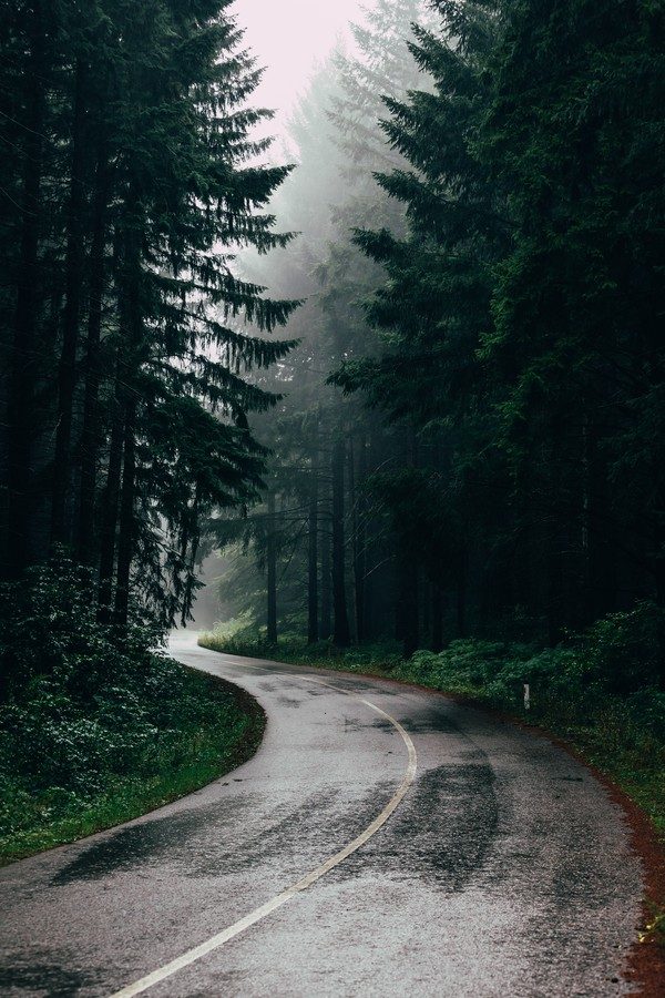 Rainy Road - Fineart photography by Christian Hartmann