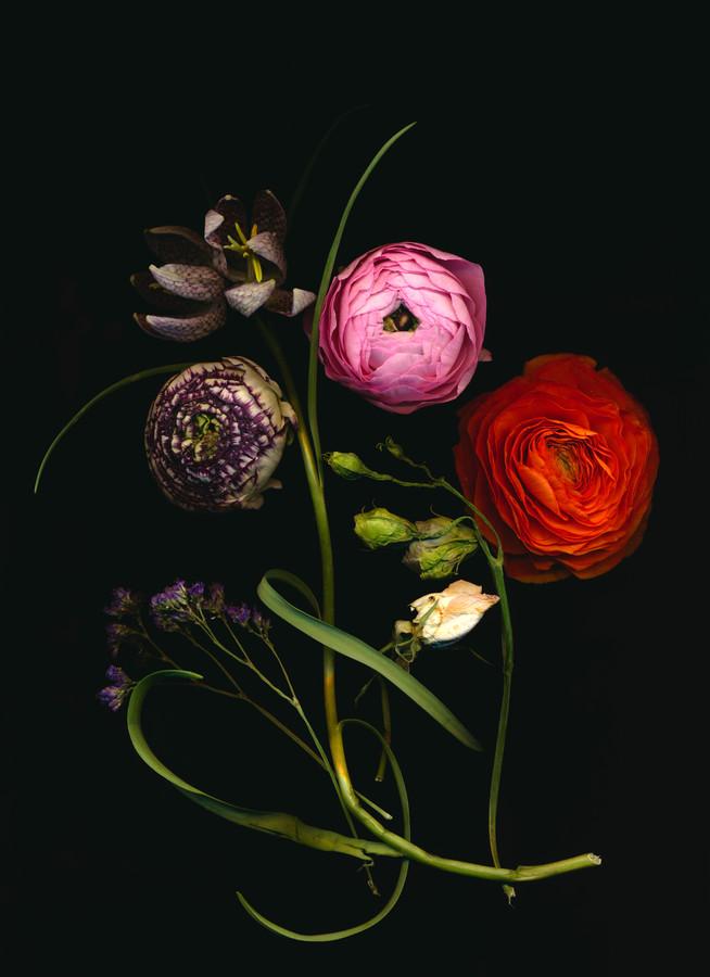Julia - Fineart photography by Ramona Reimann