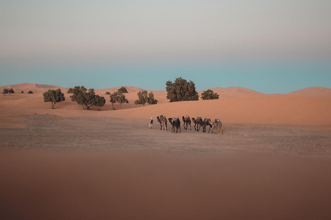 Sahara Desert - fotokunst von Thomas Christian Keller