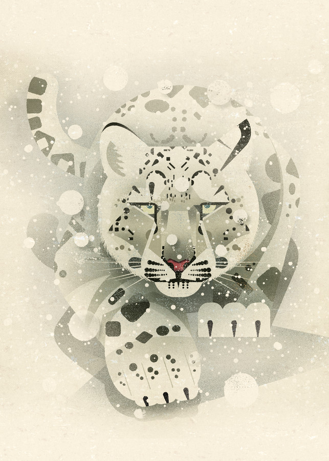 Snow Leopard - Fineart photography by Dieter Braun