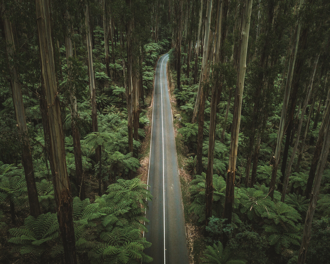Perfect Road - Fineart photography by Fin Matson