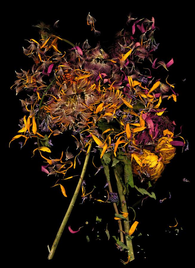 Kornelia - Fineart photography by Ramona Reimann