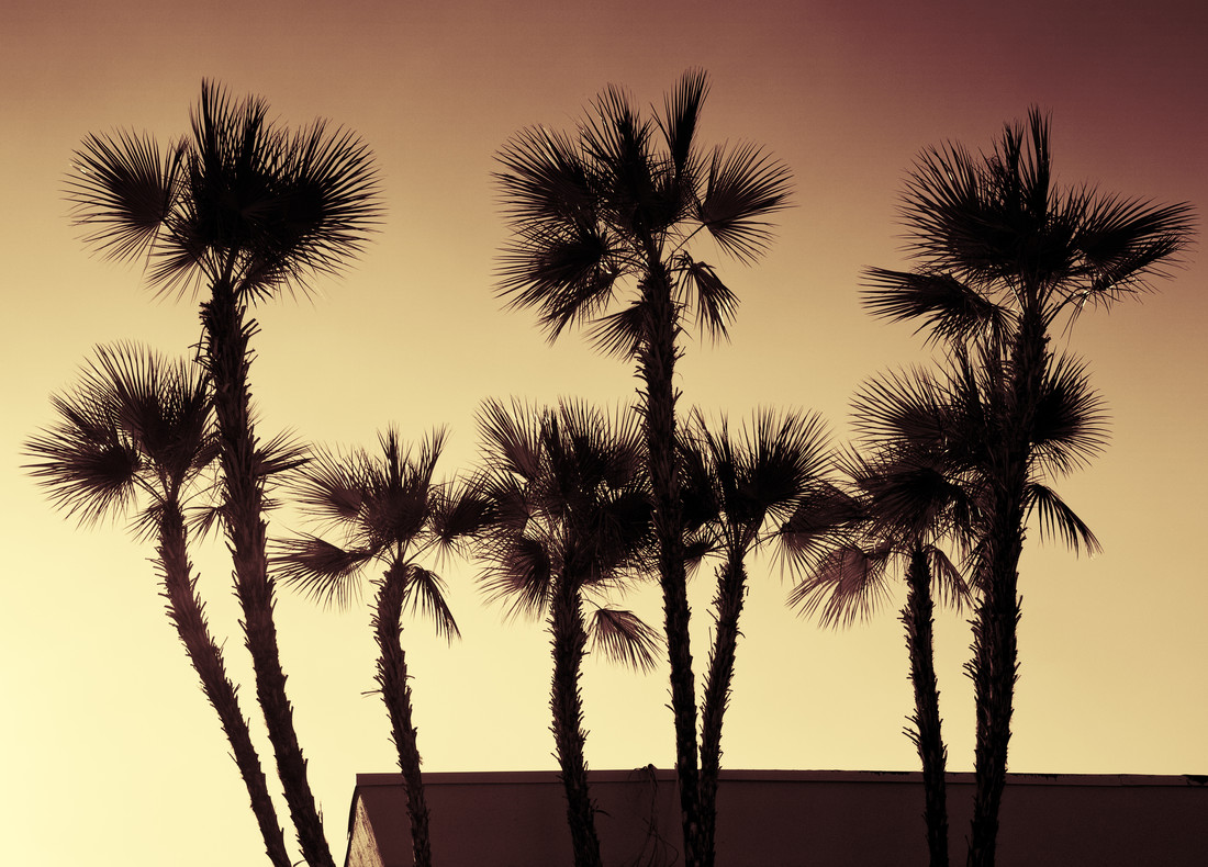 California - Fineart photography by Aurica Voss