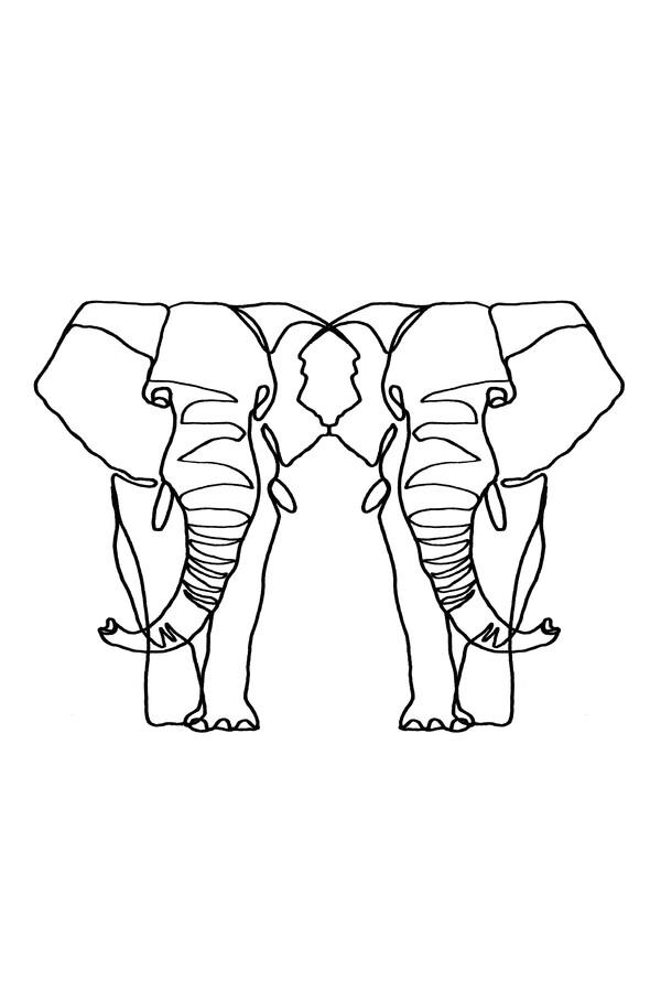 Elephant Lines - Fineart photography by Julia Hariri