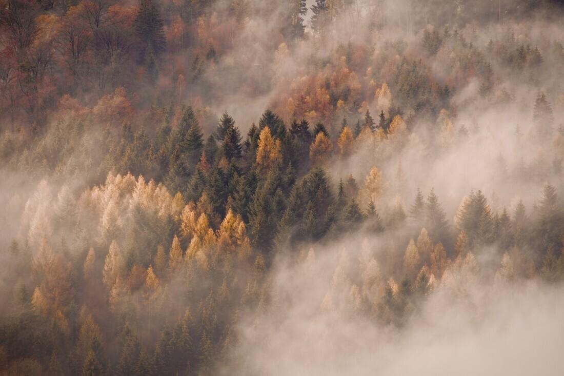Autumn's Breath - Fineart photography by Alex Wesche