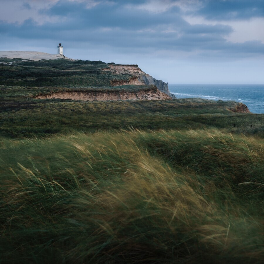 Blown by the Wind - Fineart photography by Alex Wesche