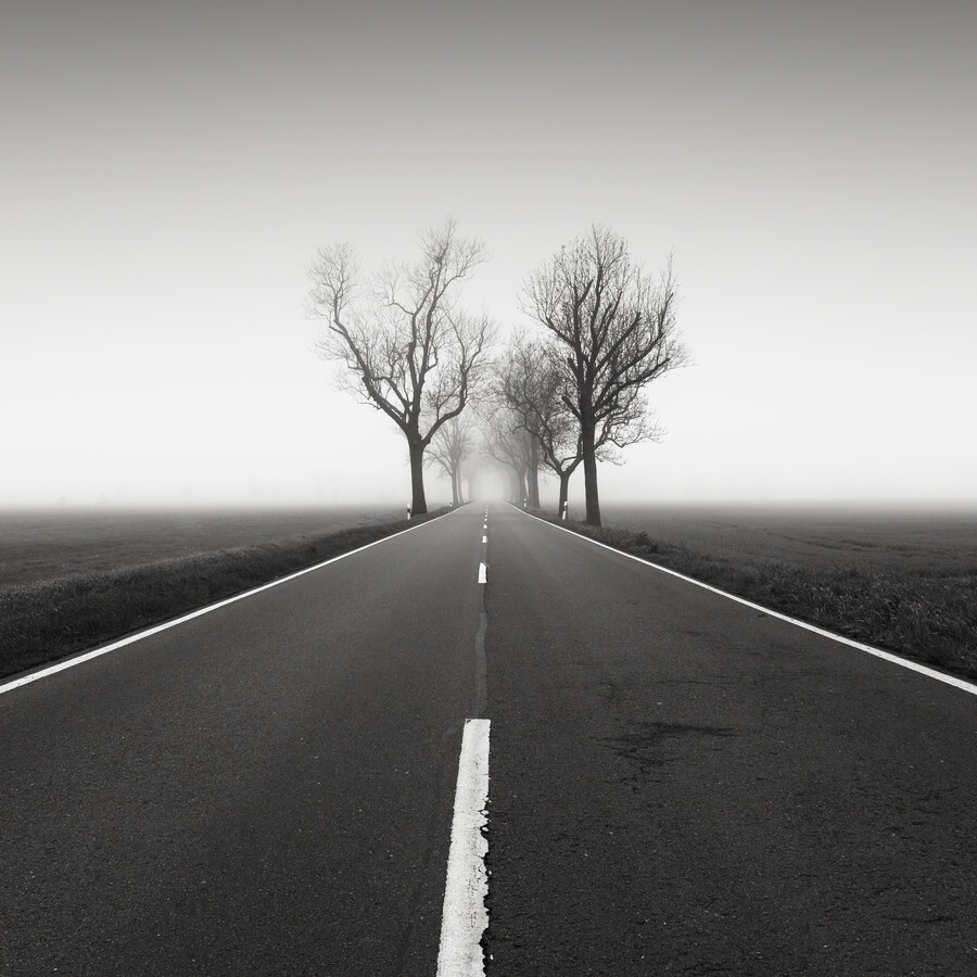 Road to nowhere 4 - Fineart photography by Thomas Wegner