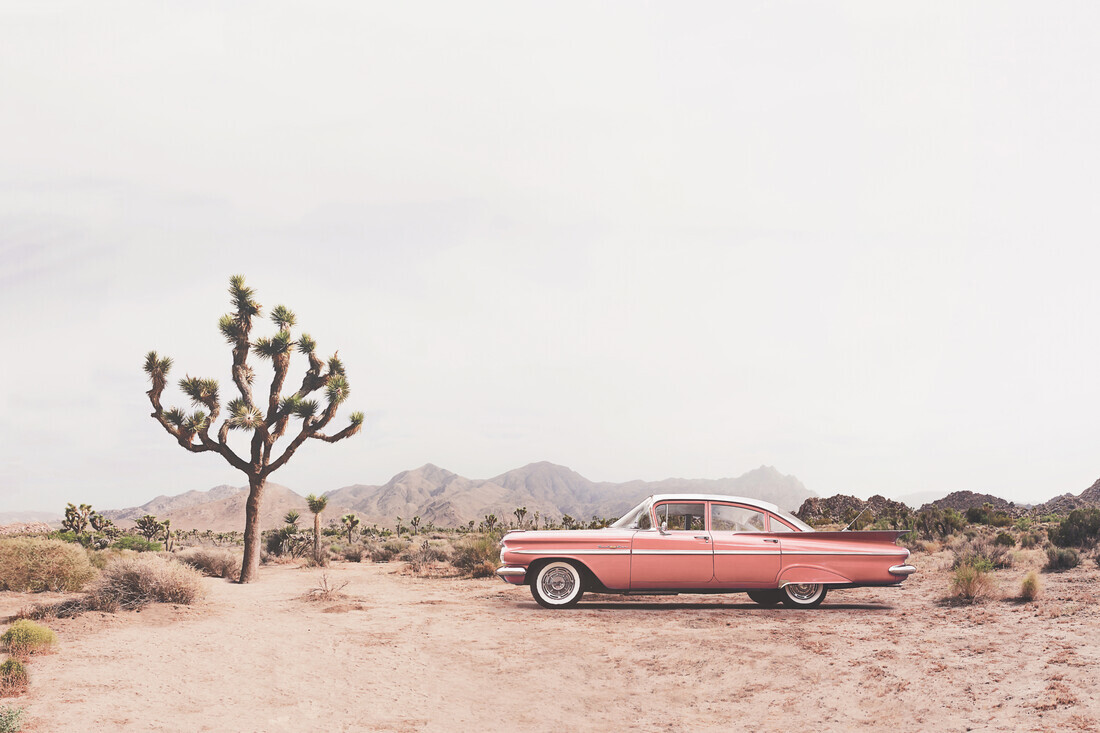 California Living - Fineart photography by Kathrin Pienaar